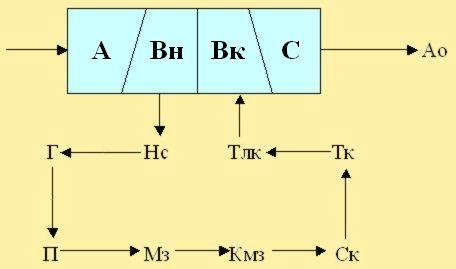 Модель верхнего отдела пчелы BEEMODEL.NAROD.RU