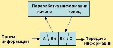 Топография модулей и моделей особей пчёл с элементами связи верхнего модуля. BEEMODEL.NAROD.RU