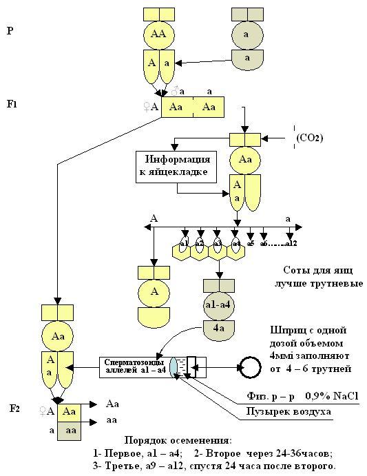 Схема-инструм-3